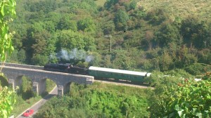 View of Steam Train from Corfe Castle